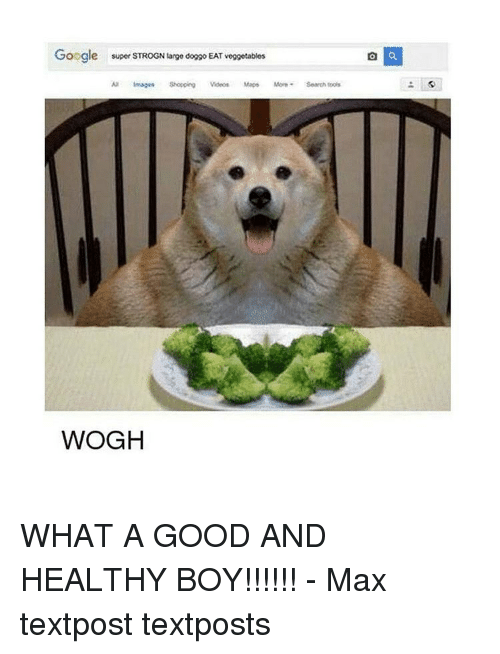 video mapping: Google  super STROGN large doggo EAT veggetables  images Shoppeg Videos Maps More Search tools  WOGH WHAT A GOOD AND HEALTHY BOY!!!!!! - Max textpost textposts