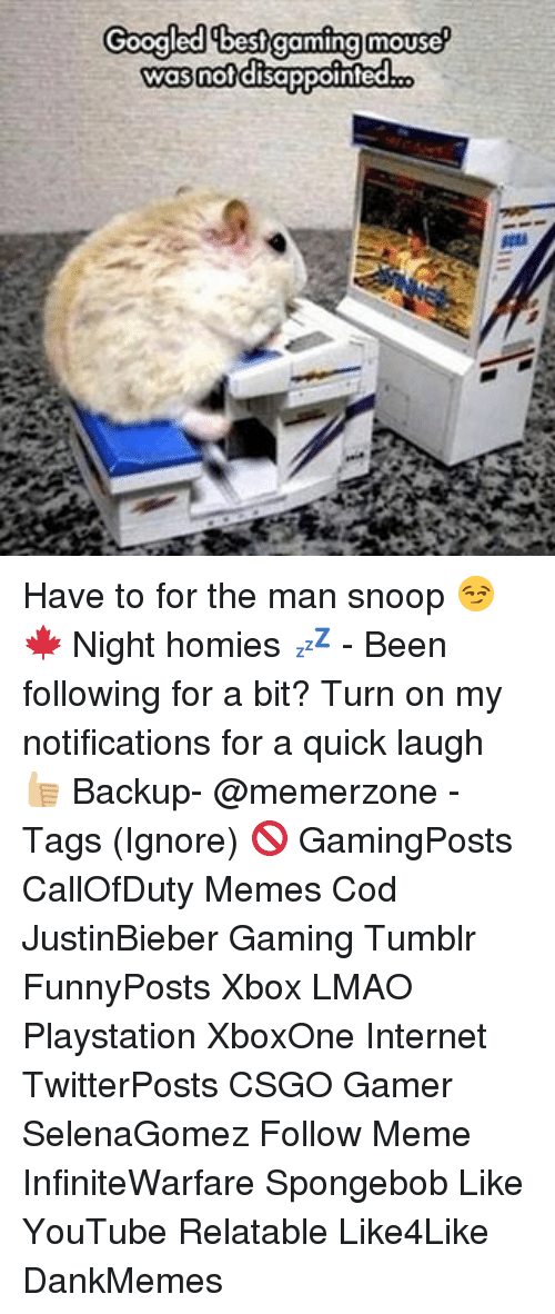 Best Gaming: Googled best gaming mouse  was not disappointed Have to for the man snoop 😏🍁 Night homies 💤 - Been following for a bit? Turn on my notifications for a quick laugh 👍🏼 Backup- @memerzone - Tags (Ignore) 🚫 GamingPosts CallOfDuty Memes Cod JustinBieber Gaming Tumblr FunnyPosts Xbox LMAO Playstation XboxOne Internet TwitterPosts CSGO Gamer SelenaGomez Follow Meme InfiniteWarfare Spongebob Like YouTube Relatable Like4Like DankMemes