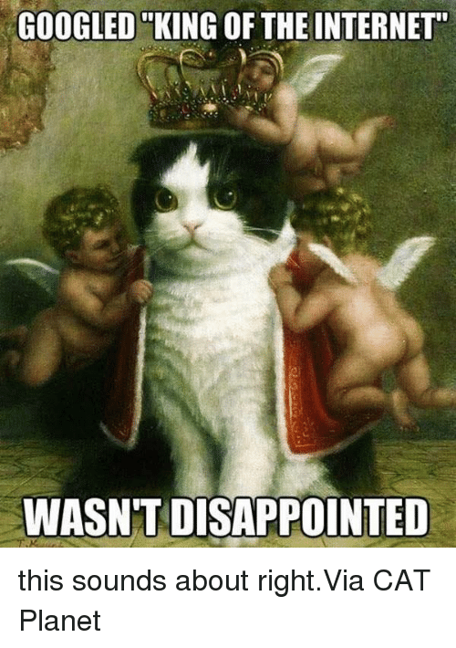 "Google, Internet, and Memes: GOOGLED KING OF THE INTERNET""  WASNTIDISAPPOINTED this sounds about right.Via CAT Planet"