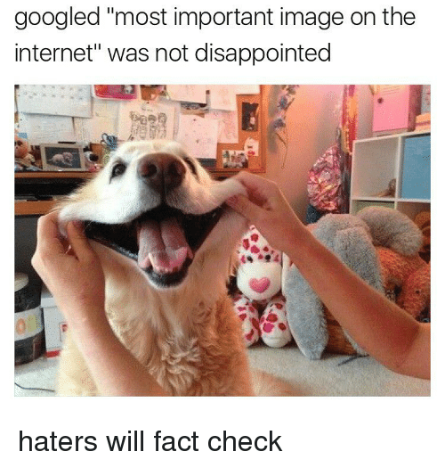 """Fact Checking: googled """"most important image on the  internet"""" was not disappointed haters will fact check"""