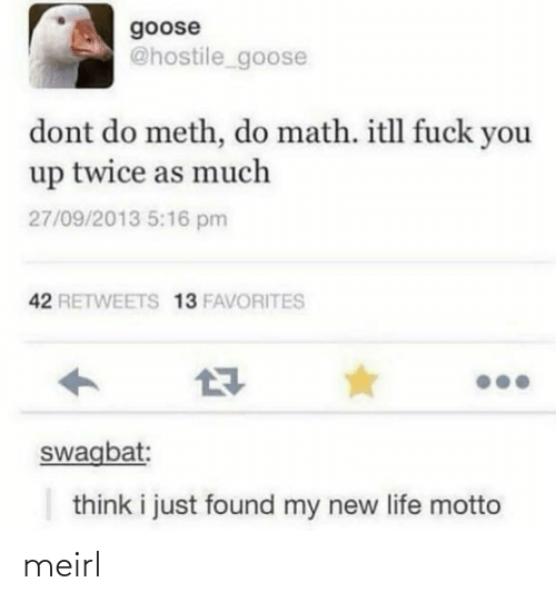 meth: goose  @hostile_goose  dont do meth, do math. itll fuck you  up twice as much  27/09/2013 5:16 pm  42 RETWEETS 13 FAVORITES  swagbat:  think i just found my new life motto meirl