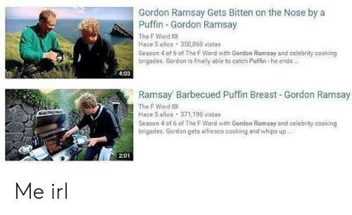 season-4: Gordon Ramsay Gets Bitten on the Nose by a  Puffin Gordon Ramsay  The F Word a  Hace 5 años 350,868 vistas  Season 4 of 6 of The F Word with Gordon Ramsay and celebrity cooking  brigades. Gordon is finally able to catch Puffin-he ends  4:03  Ramsay Barbecued Puffin Breast Gordon Ramsay  The F Word 2  Hace 5 años 371,198 vistas  Season 4 of 6 of The F Word with Gordon Ramsay and celebrity cooking  brigades. Gordon gets alfresco cooking and whips up  2:01 Me irl