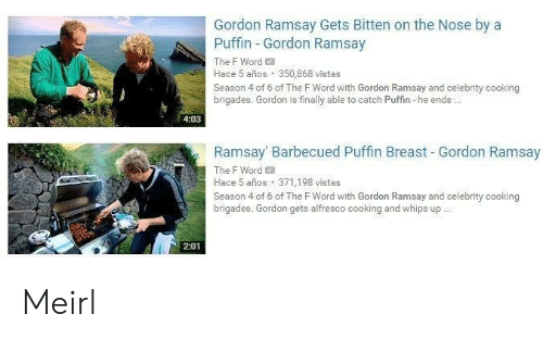 puffin: Gordon Ramsay Gets Bitten on the Nose by a  Puffin Gordon Ramsay  The F Word  Hace 5 años 350,868 vistas  Season 4 of 6 of The F Word with Gordon Ramsay and celebrity cooking  brigades. Gordon is finally able to catch Puffin he ends..  4:03  Ramsay Barbecued Puffin Breast - Gordon Ramsay  The F Word  Hace 5 años 371,198 vistas  Season 4 of 6 of The FWord with Gordon Ramsay and celebrity cooking  brigades. Gordon gets alfresco cooking and whips up  2:01 Meirl