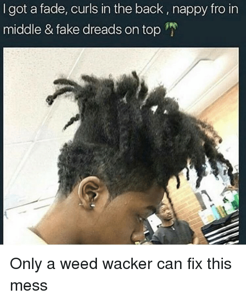 Faded, Dank Memes, and Weeds: got a fade, curls in the back, nappy fro in  middle & fake dreads on top Only a weed wacker can fix this mess