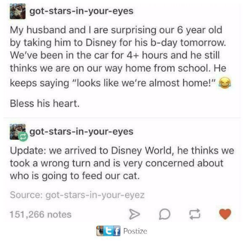"""Bless His Heart: got-stars-in-your-eyes  My husband and I are surprising our 6 year old  by taking him to Disney for his b-day tomorrow.  We've been in the car for 4+ hours and he still  thinks we are on our way home from school. He  keeps saying """"looks like we're almost home!""""  Bless his heart.  got-stars-in-your-eyes  Update: we arrived to Disney World, he thinks we  took a wrong turn and is very concerned about  who is going to feed our cat.  Source: got-stars-in-your-eyez  151,266 notes  FPostize"""