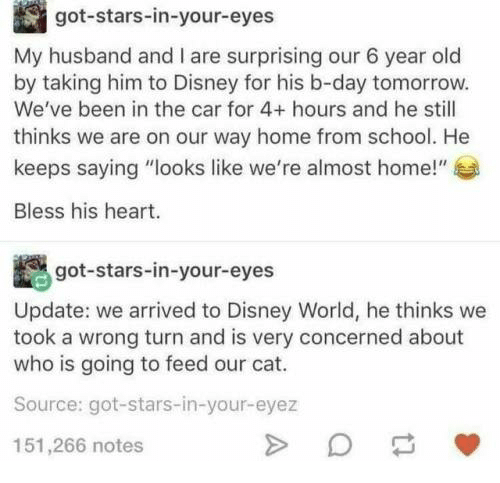 """b day: got-stars-in-your-eyes  My husband and I are surprising our 6 year old  by taking him to Disney for his b-day tomorrow.  We've been in the car for 4+ hours and he still  thinks we are on our way home from school. He  keeps saying """"looks like we're almost home!""""  Bless his heart.  got-stars-in-your-eyes  Update: we arrived to Disney World, he thinks we  took a wrong turn and is very concerned about  who is going to feed our cat.  Source: got-stars-in-your-eyez  151,266 notes"""