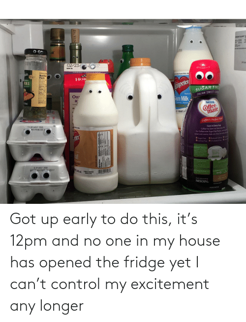 fridge: Got up early to do this, it's 12pm and no one in my house has opened the fridge yet I can't control my excitement any longer