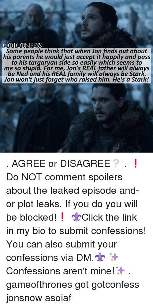 Family, Memes, and Parents: GOTCONFESS  Some people think that when Jon finds out about  his parents he would just accept it happily and pass  to his targaryan side so easily which seems to  me so stupid. For me, Jon's REAL father will always  be Ned and his REAL family will always be Stark.  Jon won't just forget who raised him. He's a Stark! . AGREE or DISAGREE❔ . ❗️Do NOT comment spoilers about the leaked episode and-or plot leaks. If you do you will be blocked!❗️ ⚜Click the link in my bio to submit confessions! You can also submit your confessions via DM.⚜ ✨Confessions aren't mine!✨ . gameofthrones got gotconfess jonsnow asoiaf