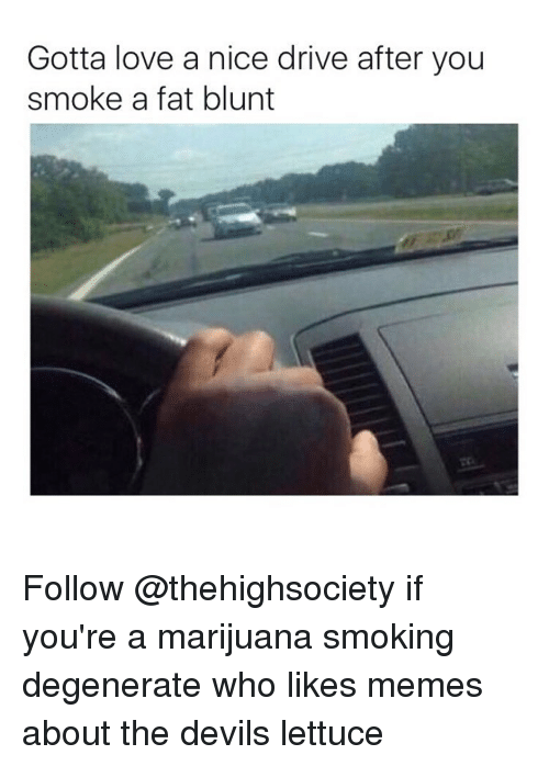 Blunts, Trendy, and Who: Gotta love a nice drive after you  smoke a fat blunt Follow @thehighsociety if you're a marijuana smoking degenerate who likes memes about the devils lettuce
