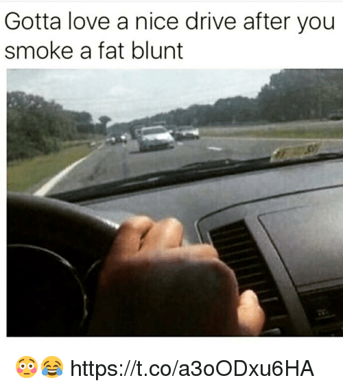 Drived: Gotta love a nice drive after you  smoke a fat blunt 😳😂 https://t.co/a3oODxu6HA
