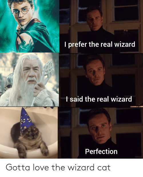 the wizard: Gotta love the wizard cat