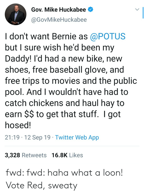 huckabee: Gov. Mike Huckabee  @GovMikeHuckabee  I don't want Bernie as @POTUS  but I sure wish he'd been my  Daddy! I'd had a new bike, new  shoes, free baseball glove, and  free trips to movies and the public  pool. And I wouldn't have had to  catch chickens and haul hay to  earn $$ to get that stuff. I got  hosed!  21:19 12 Sep 19 Twitter Web App  3,328 Retweets 16.8K Likes fwd: fwd: haha what a loon! Vote Red, sweaty