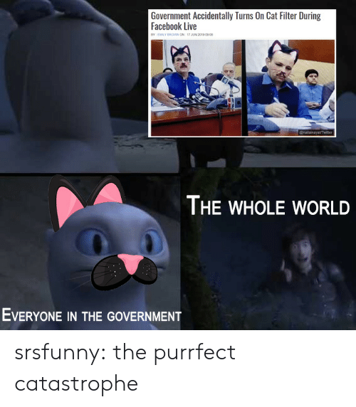 Facebook Live: Government Accidentally Turns On Cat Filter During  Facebook Live  BY EMILY BROWN ON 17 JUN 2019 0908  @nailainayatTwiter  THE WHOLE WORLD  EVERYONE IN THE GOVERNMENT srsfunny:  the purrfect catastrophe