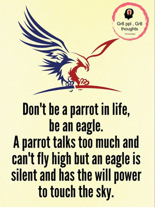 Life, Memes, and Too Much: Gr8 ppl, Gr8  thoughts  Don't be a parrot in life,  be an eagle.  A parrot talks too much and  can't fly high but an eagle is  silent and has the will power  to touch the sky