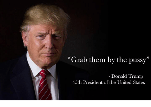https://pics.onsizzle.com/grab-them-by-the-pussy-donald-trump-45th-president-of-4589575.png
