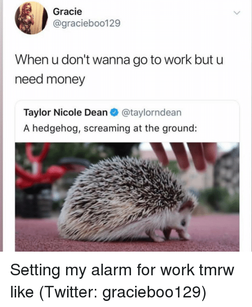 Need Money: Gracie  @graciebo0129  When u don't wanna go to work but u  need money  Taylor Nicole Dean@taylorndean  A hedgehog, screaming at the ground: Setting my alarm for work tmrw like (Twitter: gracieboo129)