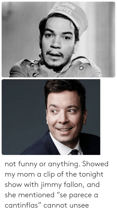 """The Tonight Show with Jimmy Fallon: GRAN  HOTE not funny or anything. Showed my mom a clip of the tonight show with jimmy fallon, and she mentioned """"se parece a cantinflas"""" cannot unsee"""