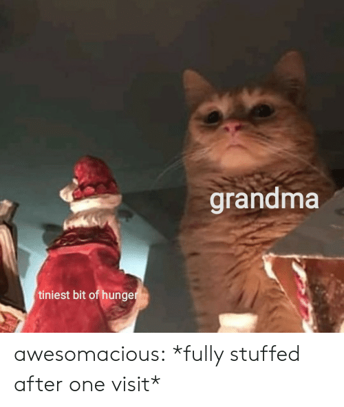 hunger: grandma  tiniest bit of hunger awesomacious:  *fully stuffed after one visit*