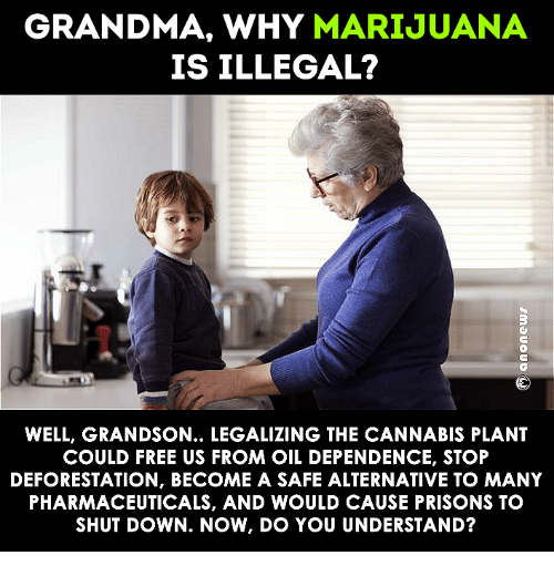 Alternator: GRANDMA, WHY  MARIJUANA  IS ILLEGAL?  WELL, GRANDSON... LEGALIZING THE CANNABIS PLANT  COULD FREE US FROM OIL DEPENDENCE, STOP  DEFORESTATION, BECOME A SAFE ALTERNATIVE TO MANY  PHARMACEUTICALS, AND WOULD CAUSE PRISONS TO  SHUTDOWN. NOW, IDO YOU UNDERSTAND?