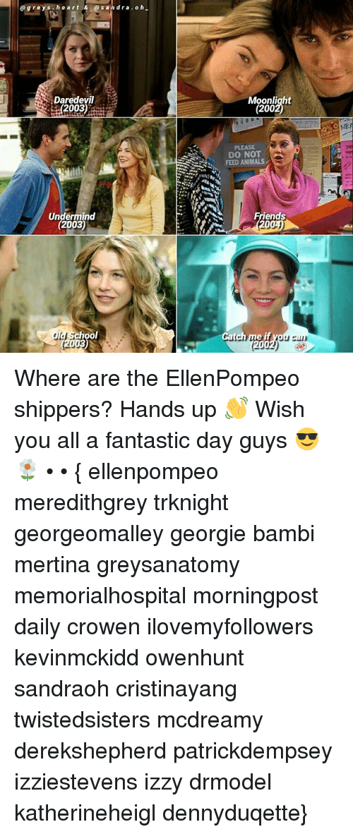 Animals, Bailey Jay, and Bambi: gre y s h e art & s an dra o h  Daredevil  2003)  Undermind  2003)  la School  (2003)  Moonlight  (200  PLEASE  DO NOT  FEED ANIMALS  Friends Where are the EllenPompeo shippers? Hands up 👋 Wish you all a fantastic day guys 😎🌼 • • { ellenpompeo meredithgrey trknight georgeomalley georgie bambi mertina greysanatomy memorialhospital morningpost daily crowen ilovemyfollowers kevinmckidd owenhunt sandraoh cristinayang twistedsisters mcdreamy derekshepherd patrickdempsey izziestevens izzy drmodel katherineheigl dennyduqette}