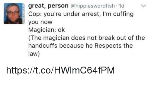 Memes, Break, and 🤖: great, person  hippieswordfish 1d  Cop: you're under arrest, I'm cuffing  you now  Magician: ok  (The magician does not break out of the  handcuffs because he Respects the  law) https://t.co/HWlmC64fPM