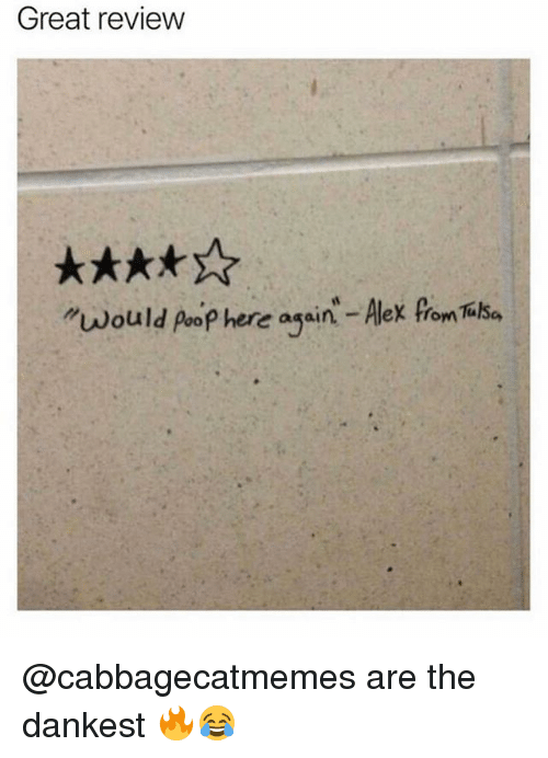 """Poopes: Great review  """"would poop here again - Alex from Tilha @cabbagecatmemes are the dankest 🔥😂"""