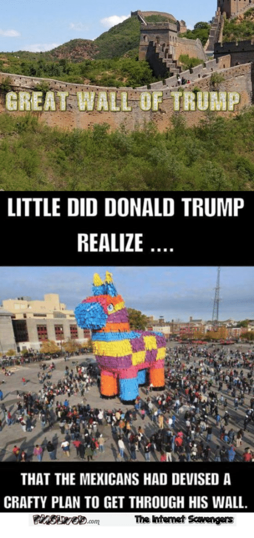 Great Wall Of Trump: GREAT WALL OF TRUMP  LITTLE DID DONALD TRUMP  REALIZE..  THAT THE MEXICANS HAD DEVISED A  CRAFTY PLAN TO GET THROUGH HIS WALL  The intemet Scavengers