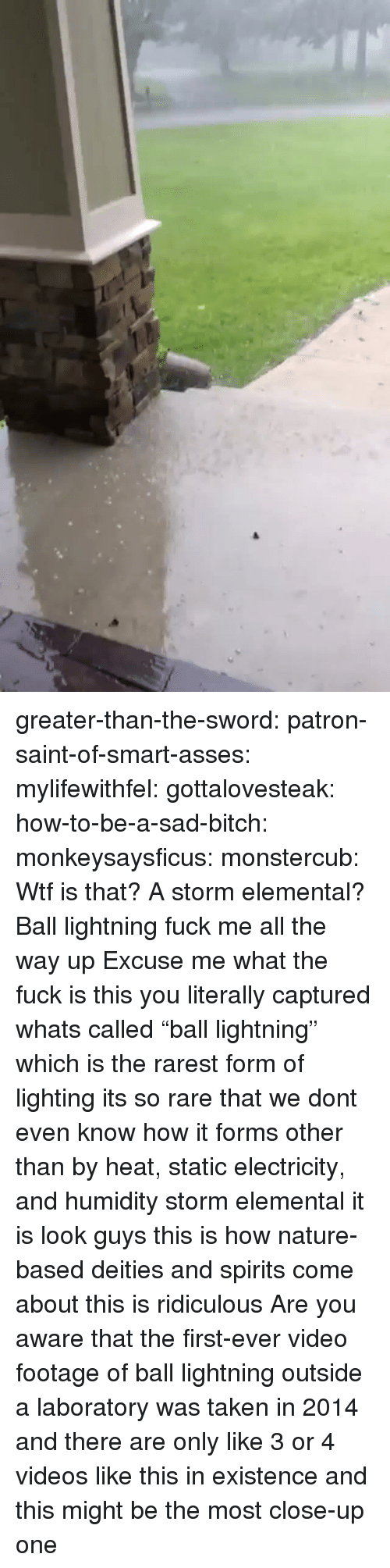 "How To Be A: greater-than-the-sword:  patron-saint-of-smart-asses:  mylifewithfel:  gottalovesteak:  how-to-be-a-sad-bitch:  monkeysaysficus:   monstercub: Wtf is that? A storm elemental?  Ball lightning fuck me all the way up   Excuse me what the fuck is this  you literally captured whats called ""ball lightning"" which is the rarest form of lighting its so rare that we dont even know how it forms other than by heat, static electricity, and humidity  storm elemental it is  look guys this is how nature-based deities and spirits come about this is ridiculous  Are you aware that the first-ever video footage of ball lightning outside a laboratory was taken in 2014 and there are only like 3 or 4 videos like this in existence and this might be the most close-up one"