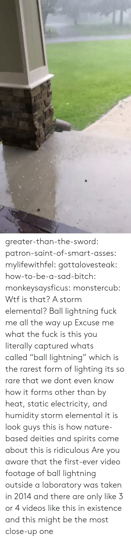 """Wtf Is That: greater-than-the-sword:  patron-saint-of-smart-asses:  mylifewithfel:  gottalovesteak:  how-to-be-a-sad-bitch:  monkeysaysficus:   monstercub: Wtf is that? A storm elemental?  Ball lightning fuck me all the way up   Excuse me what the fuck is this  you literally captured whats called""""ball lightning"""" which is the rarest form of lighting its so rare that we dont even know how it forms other than by heat, static electricity, and humidity  storm elemental it is  look guys this is how nature-based deities and spirits come about this is ridiculous  Are you aware that the first-ever video footage of ball lightning outside a laboratory was taken in 2014 and there are only like 3 or 4 videos like this in existence and this might be the most close-up one"""