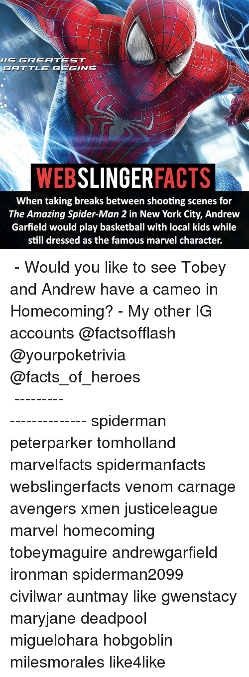 Andrew Garfield: GREATEST  JIS GGINTS  WEB  SLINGER  FACTS  When taking breaks between shooting scenes for  The Amazing Spider-Man 2 in New York City, Andrew  Garfield would play basketball with local kids while  still dressed as the famous marvel character. ▲▲ - Would you like to see Tobey and Andrew have a cameo in Homecoming? - My other IG accounts @factsofflash @yourpoketrivia @facts_of_heroes ⠀⠀⠀⠀⠀⠀⠀⠀⠀⠀⠀⠀⠀⠀⠀⠀⠀⠀⠀⠀⠀⠀⠀⠀⠀⠀⠀⠀⠀⠀⠀⠀⠀⠀⠀⠀ ⠀⠀----------------------- spiderman peterparker tomholland marvelfacts spidermanfacts webslingerfacts venom carnage avengers xmen justiceleague marvel homecoming tobeymaguire andrewgarfield ironman spiderman2099 civilwar auntmay like gwenstacy maryjane deadpool miguelohara hobgoblin milesmorales like4like