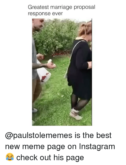Instagram, Marriage, and Meme: Greatest marriage proposal  response ever @paulstolememes is the best new meme page on Instagram😂 check out his page