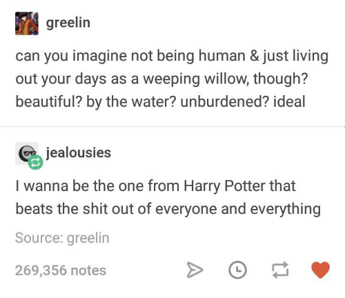 Beautiful, Harry Potter, and Shit: greelin  can you imagine not being human & just living  out your days as a weeping willow, though?  beautiful? by the water? unburdened? ideal  jealousies  I wanna be the one from Harry Potter that  beats the shit out of everyone and everything  Source: greelin  269,356 notes