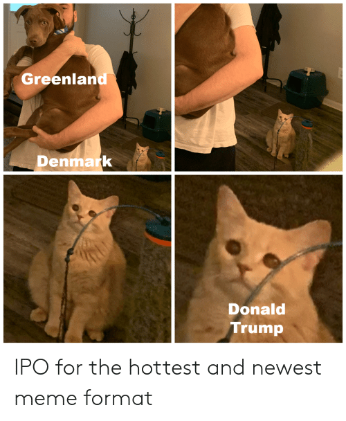 Newest Meme: Greenland  Denmark  Donald  Trump IPO for the hottest and newest meme format