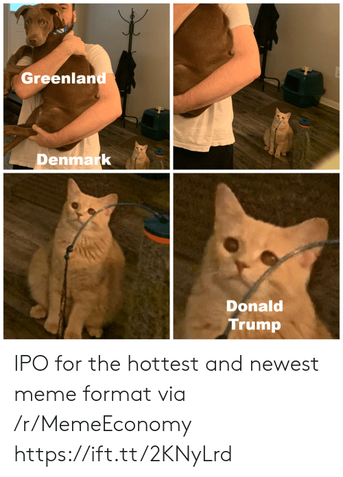 Newest Meme: Greenland  Denmark  Donald  Trump IPO for the hottest and newest meme format via /r/MemeEconomy https://ift.tt/2KNyLrd