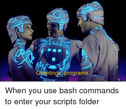bash: GreetingS, programs When you use bash commands to enter your scripts folder