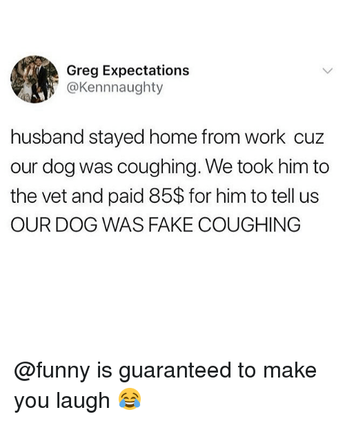 Fake, Funny, and Memes: Greg Expectations  ' @Kennnaughty  husband stayed home from work cuz  our dog was coughing. We took him to  the vet and paid 85$ for him to tell us  OUR DOG WAS FAKE COUGHING @funny is guaranteed to make you laugh 😂