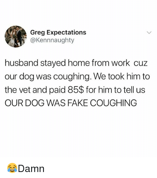 Fake, Memes, and Work: Greg Expectations  @Kennnaughty  husband stayed home from work cuz  our dog was coughing. We took him to  the vet and paid 85$ for him to tell us  OUR DOG WAS FAKE COUGHING 😂Damn
