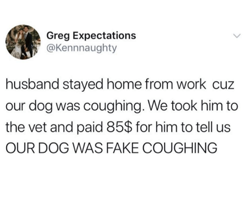 Dank, Fake, and Work: Greg Expectations  @Kennnaughty  husband stayed home from work cuz  our dog was coughing. We took him to  the vet and paid 85$ for him to tell us  OUR DOG WAS FAKE COUGHING