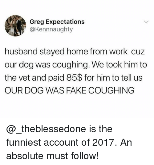 Fake, Memes, and Work: Greg Expectations  @Kennnaughty  husband stayed home from work cuz  our dog was coughing. We took him to  the vet and paid 85$ for him to tell us  OUR DOG WAS FAKE COUGHING @_theblessedone is the funniest account of 2017. An absolute must follow!