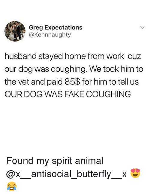 Fake, Funny, and Work: Greg Expectations  @Kennnaughty  husband stayed home from work cuz  our dog was coughing. We took him to  the vet and paid 85$ for him to tell us  OUR DOG WAS FAKE COUGHING Found my spirit animal @x__antisocial_butterfly__x 😍😂