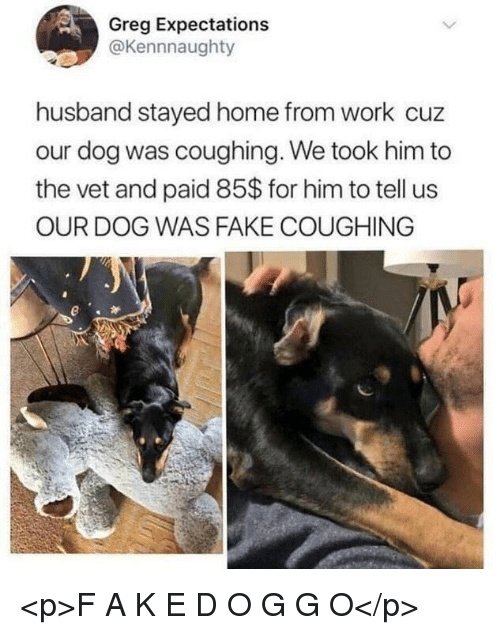 Fake, Work, and Home: Greg Expectations  @Kennnaughty  husband stayed home from work cuz  our dog was coughing. We took him to  the vet and paid 85$ for him to tell us  OUR DOG WAS FAKE COUGHING <p>F A K E D O G G O</p>