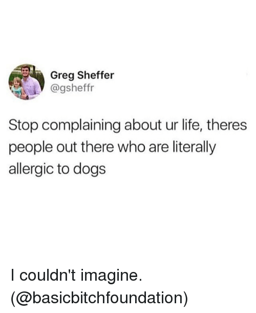 Dogs, Funny, and Life: Greg Sheffer  @gsheffr  Stop complaining about ur life, theres  people out there who are literally  allergic to dogs I couldn't imagine. (@basicbitchfoundation)