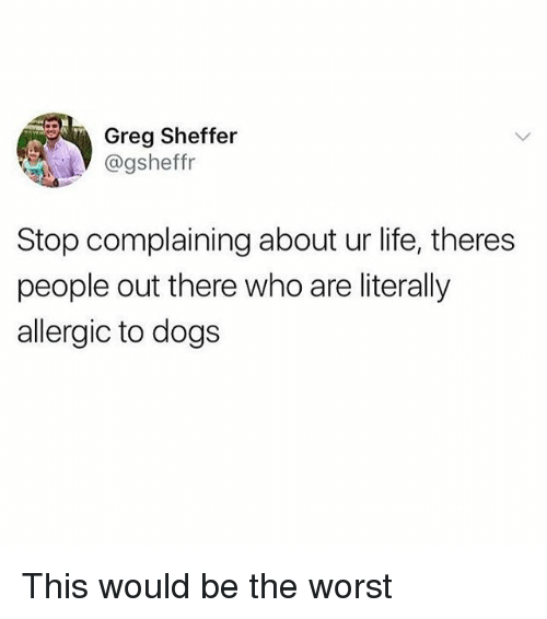 Stop Complaining: Greg Sheffer  @gsheffr  Stop complaining about ur life, theres  people out there who are literally  allergic to dogs This would be the worst
