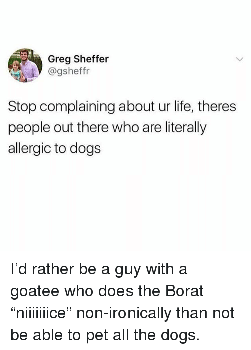 "Stop Complaining: Greg Sheffer  @gsheffr  Stop complaining about ur life, theres  people out there who are literally  allergic to dogs I'd rather be a guy with a goatee who does the Borat ""niiiiiiice"" non-ironically than not be able to pet all the dogs."