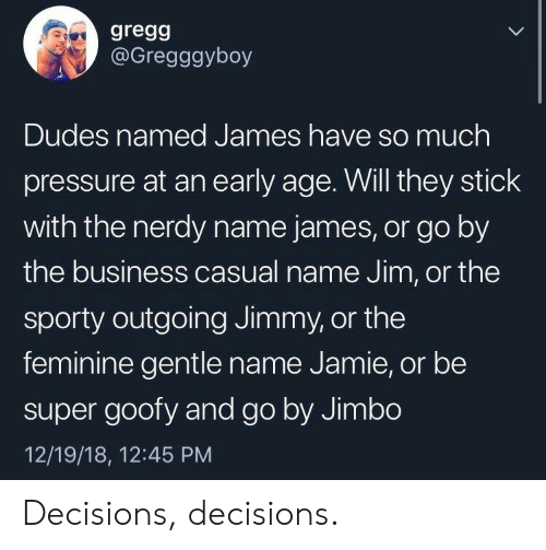 Nerdy: gregg  @Gregggyboy  Dudes named James have so much  pressure at an early age. Will they stick  with the nerdy name james, or go by  the business casual name Jim, or the  sporty outgoing Jimmy, or the  feminine gentle name Jamie, or be  super goofy and go by Jimbo  12/19/18, 12:45 PM Decisions, decisions.