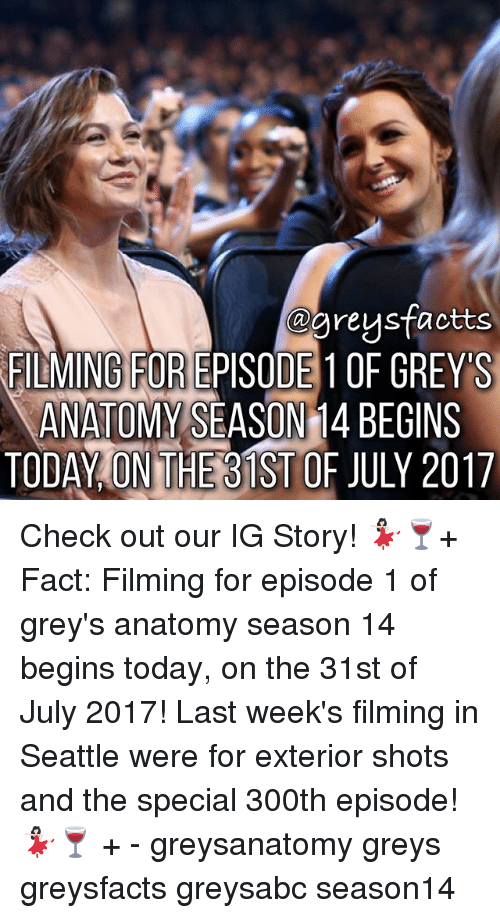 the specials: @greusfactts  FILMING FOR EPISODE 1OF GREYS  ANATOMY SEASON 1  4 BECINS  TODAY ON THEB1ST OF JULY 2017 Check out our IG Story! 💃🏻🍷+ Fact: Filming for episode 1 of grey's anatomy season 14 begins today, on the 31st of July 2017! Last week's filming in Seattle were for exterior shots and the special 300th episode! 💃🏻🍷 + - greysanatomy greys greysfacts greysabc season14