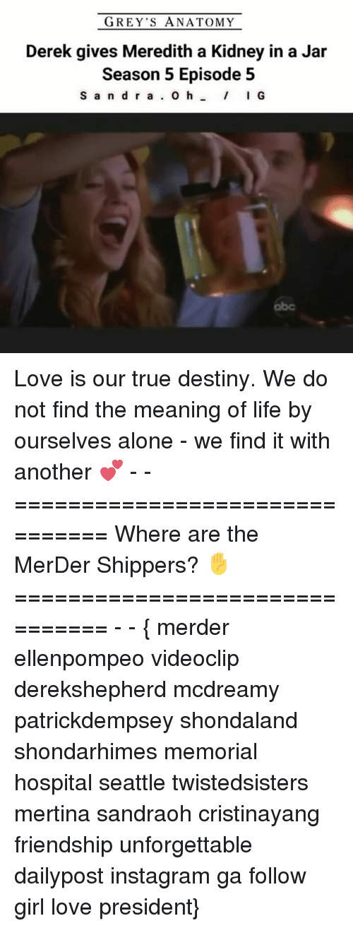 episode-5: GREY'S ANATOMY  Derek gives Meredith a Kidney in a Jar  Season 5 Episode 5  S a n d r a  O h  I G Love is our true destiny. We do not find the meaning of life by ourselves alone - we find it with another 💕 - - =============================== Where are the MerDer Shippers? ✋ =============================== - - { merder ellenpompeo videoclip derekshepherd mcdreamy patrickdempsey shondaland shondarhimes memorial hospital seattle twistedsisters mertina sandraoh cristinayang friendship unforgettable dailypost instagram ga follow girl love president}