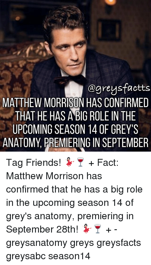 Friends, Memes, and Grey's Anatomy: @greysfactts  MATTHEW MORRISON HAS CONFIRMED  THAT HE HAS ABIG ROLE IN THE  UPCOMING SEASON 14 0F GREY'S  ANATOMY, PREMIERING IN SEPTEMBER Tag Friends! 💃🏻🍷 + Fact: Matthew Morrison has confirmed that he has a big role in the upcoming season 14 of grey's anatomy, premiering in September 28th! 💃🏻🍷 + - greysanatomy greys greysfacts greysabc season14