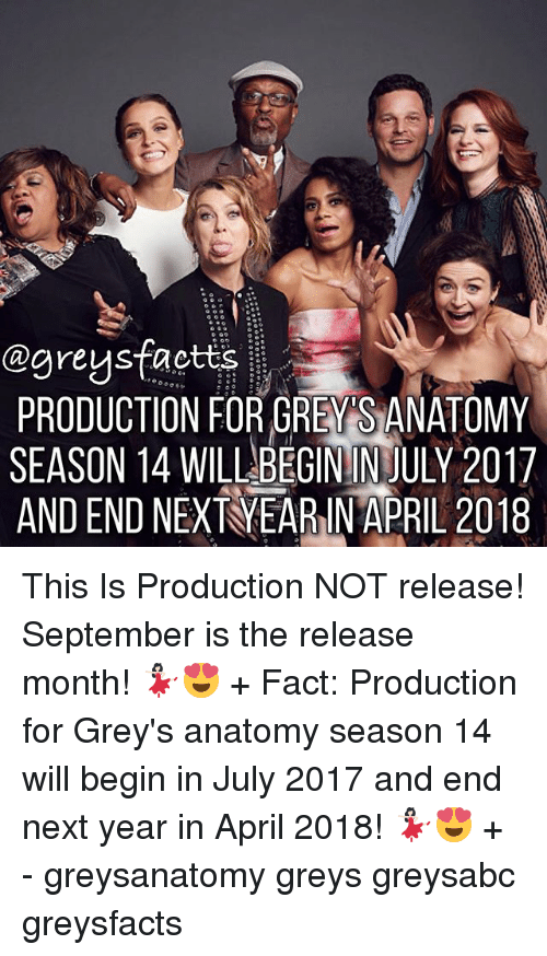 Memes, Grey's Anatomy, and Grey: @greystactes  PRODUCTION FOR GREY SANATOMY  SEASON 14 WILLABEGIN INJULY 2017  AND END NEXT YEARIN APRIL 2018 This Is Production NOT release! September is the release month! 💃🏻😍 + Fact: Production for Grey's anatomy season 14 will begin in July 2017 and end next year in April 2018! 💃🏻😍 + - greysanatomy greys greysabc greysfacts