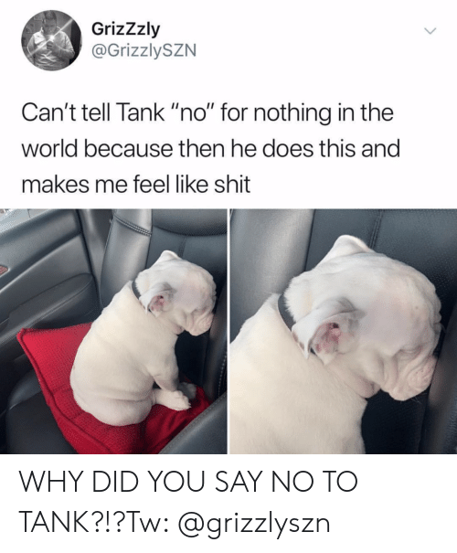 "Cant Tell: GrizZzly  @GrizzlySZN  Can't tell Tank ""no"" for nothing in the  world because then he does this and  makes me feel like shit WHY DID YOU SAY NO TO TANK?!?Tw: @grizzlyszn"